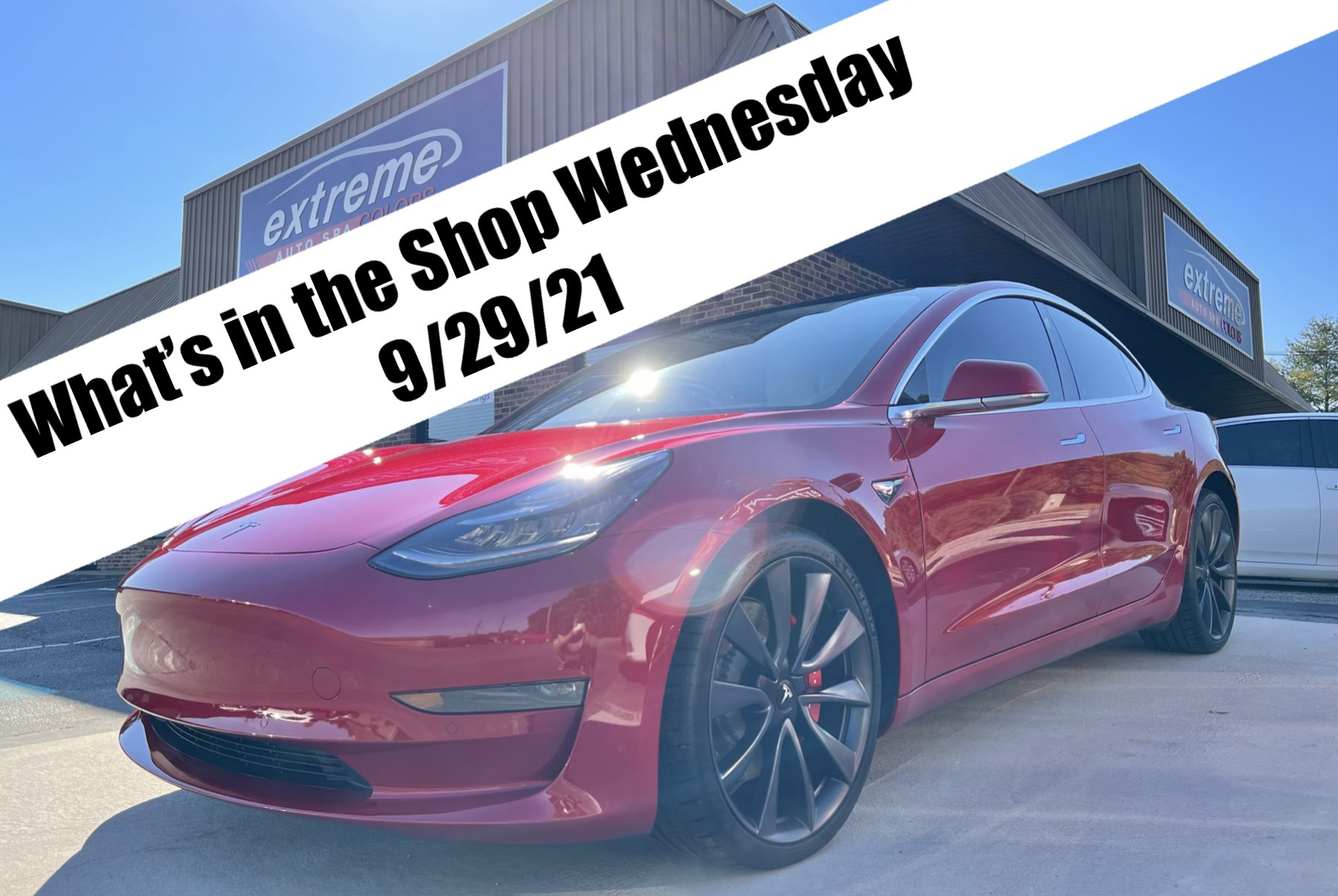 What's in the Shop Wednesday 9/29/21 Featuring Service Dogs for Veterans